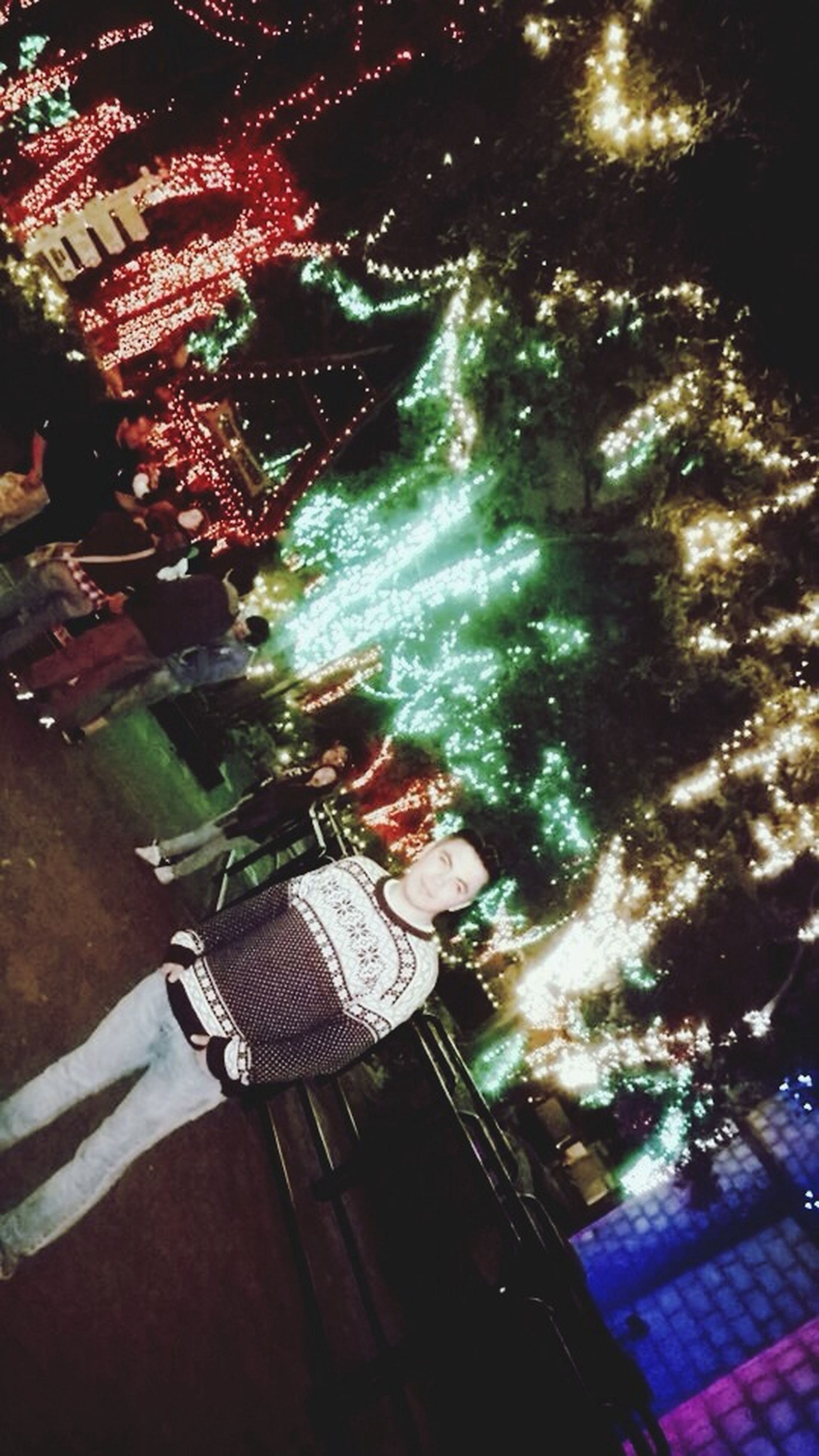 lifestyles, leisure activity, celebration, night, person, unrecognizable person, men, illuminated, high angle view, holding, part of, decoration, outdoors, low section, tree, sunlight