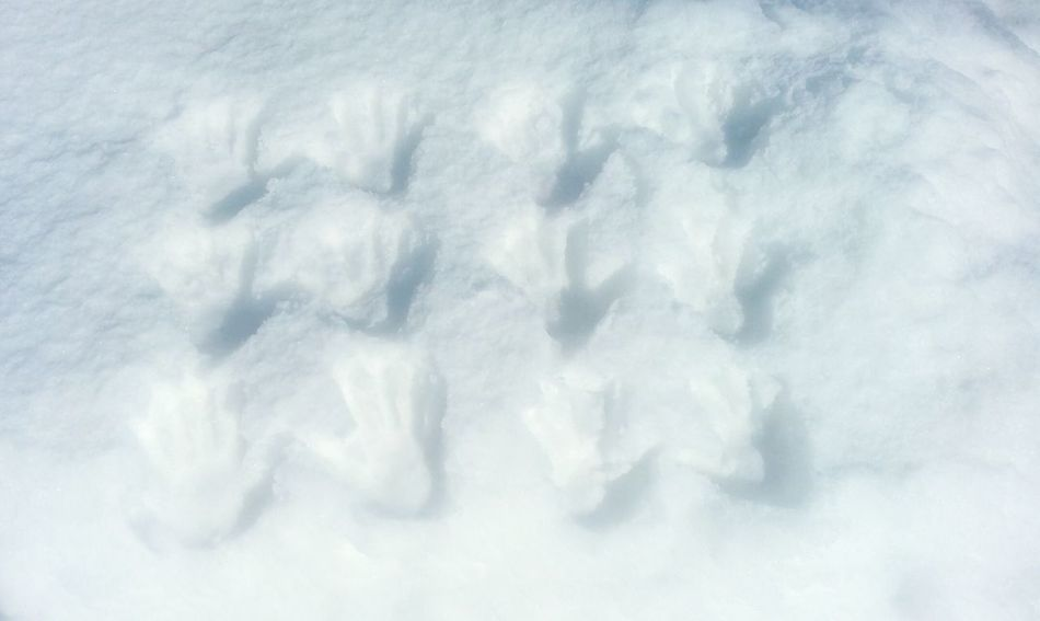 Textured  Backgrounds Abstract No People Close-up Crumpled Outdoors Day Traces Glacial Snow Ice Winter Cold Temperature