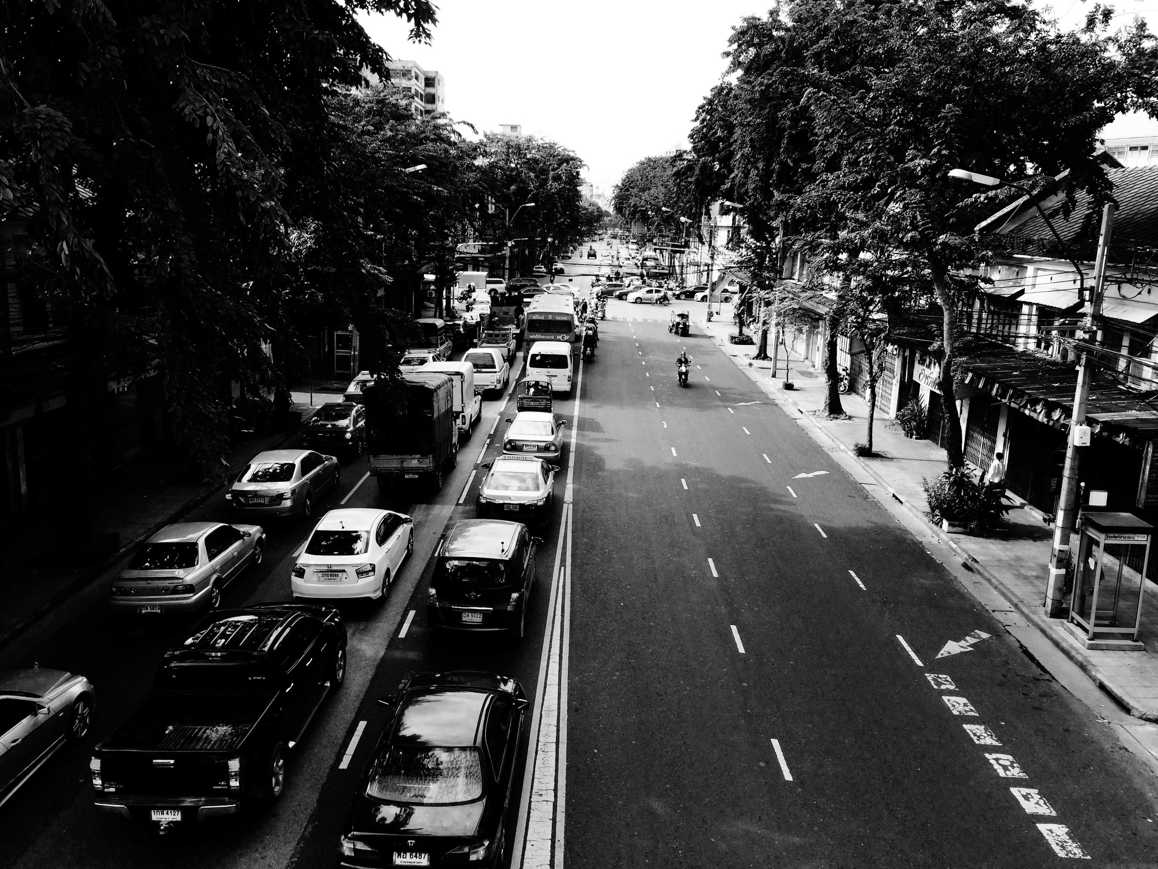 transportation, land vehicle, mode of transport, car, tree, street, the way forward, road, diminishing perspective, incidental people, city, vanishing point, stationary, city life, large group of people, in a row, road marking, parking, traffic