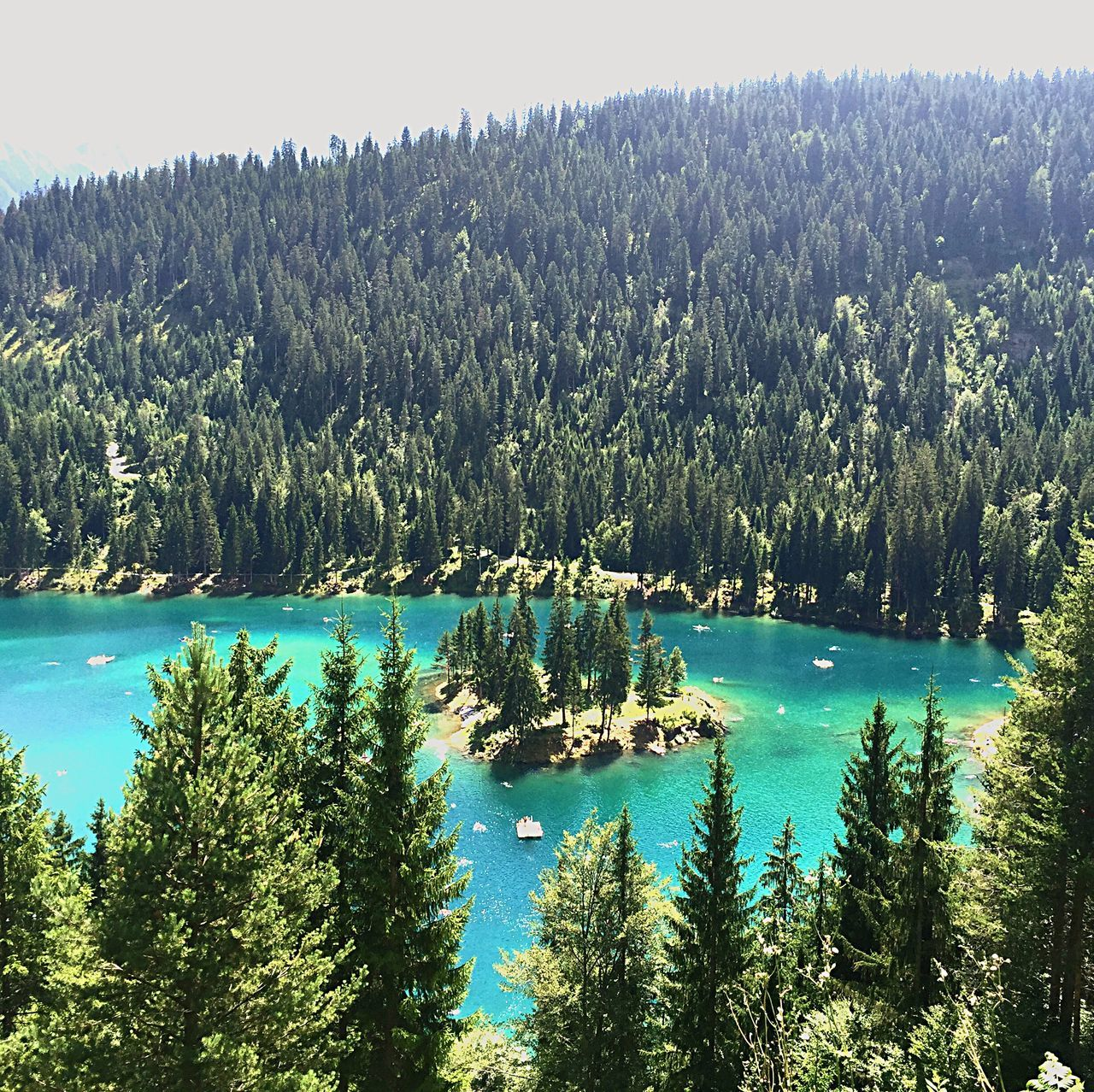 Caumasee Flims Bergsee Nature Beauty In Nature Forest See Water Green Color Nature Photography