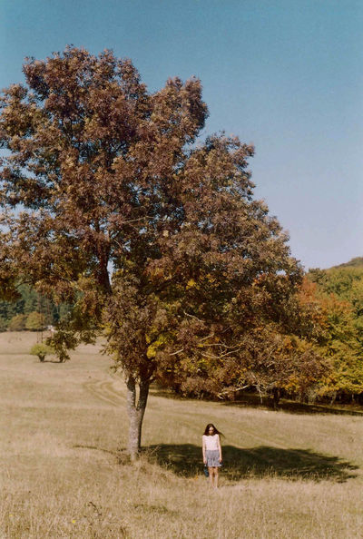 Can Canon Canon_photos Canonphotography Film Film Photography Filmisnotdead Girl Girl Power Girls Nature Nature Nature On Your Doorstep Nature Photography Nature's Diversities Nature_collection Nature_perfection Naturelover Naturelovers Naturephotography Outdoors Tbilisi Tree Tree Trees