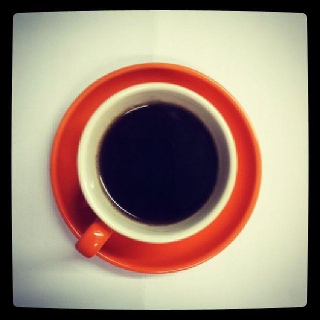 정신차려보니 내방에 에스프레소잔이.. 아무래도 Redscarf 프로젝트 대성할듯 Mokaexpress 모카포트 Espresso 에스프레소 커피 coffee leesarcoffeeroasters honeyjarstudio 레드스카프