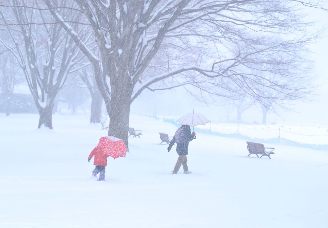 Side view of two people with umbrellas walking on snow covered landscape