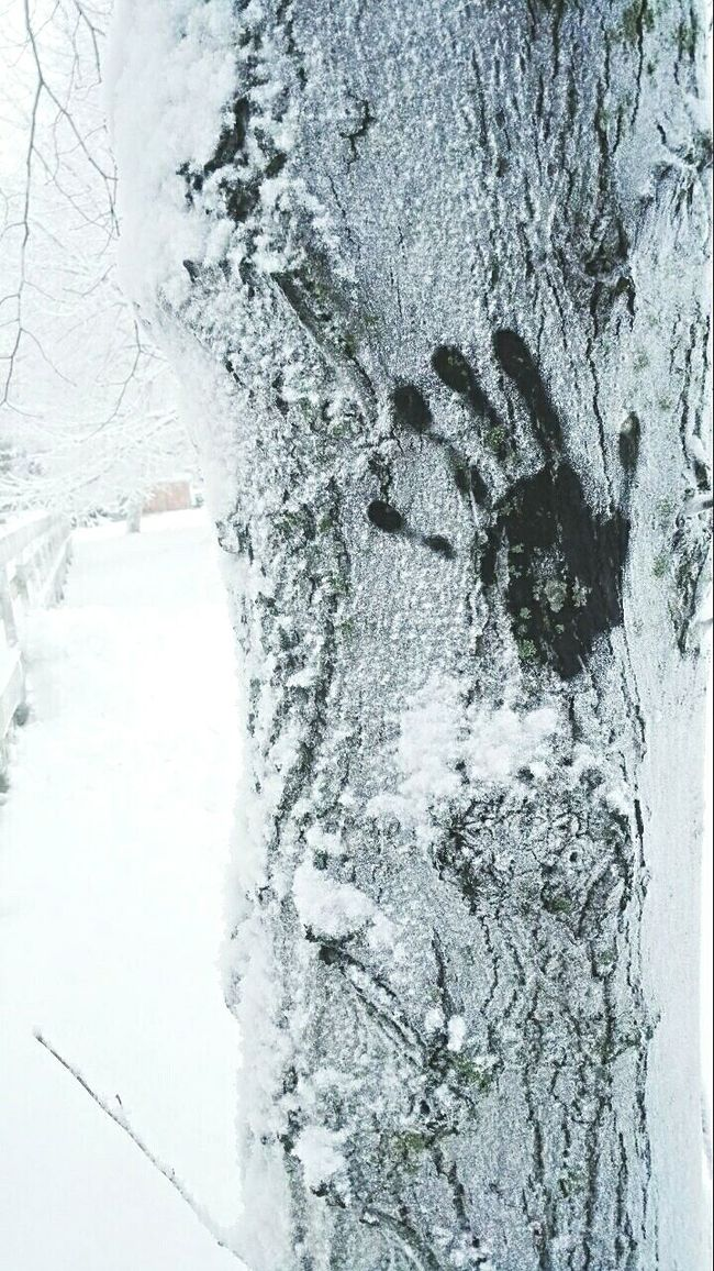 It really is Freezing. Picture is already here but now Deepfreeze! Handprint Tree Letitsnowletitsnowletitsnow Snow