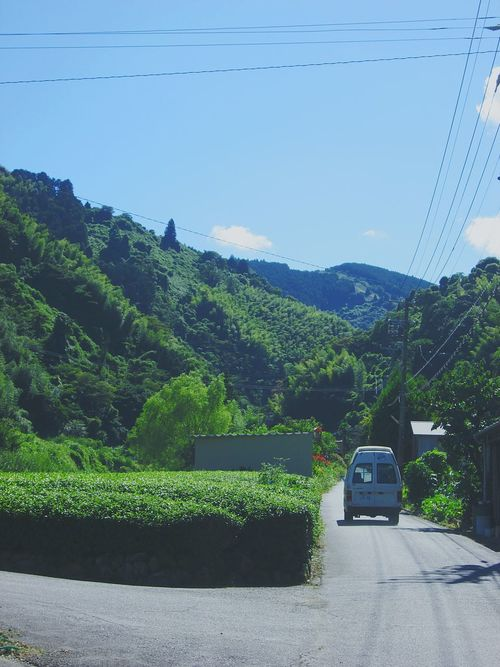 Country Road Country Life My Birthplace Nippon Car Tea Plantations Green