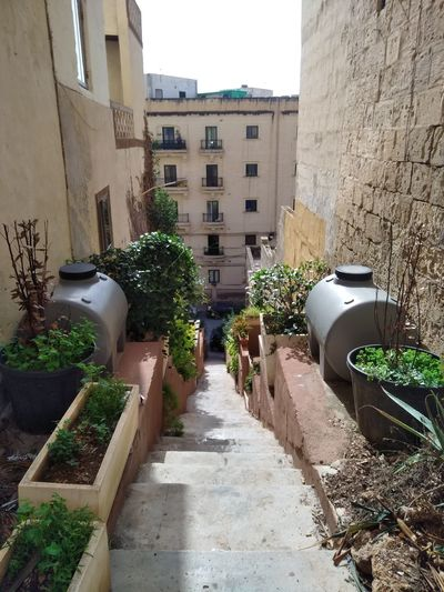 Malta Mediterranean  Msida Architecture Building Exterior Built Structure Day Freewall No People Stone Stonewall Street