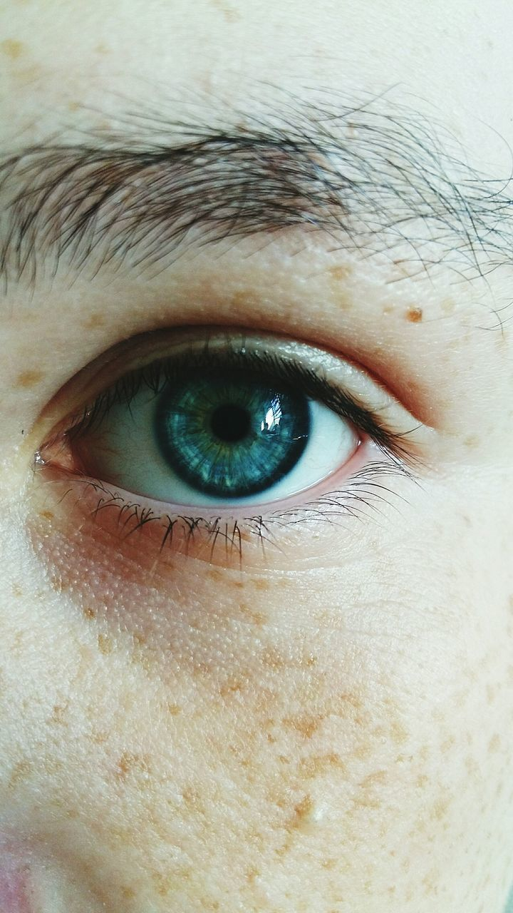 human eye, human body part, eyelash, one person, eyeball, portrait, looking at camera, close-up, eyelid, eyesight, human skin, sensory perception, eyebrow, iris - eye, real people, blue eyes, vision, human face, men, outdoors, one man only, day, adult, people