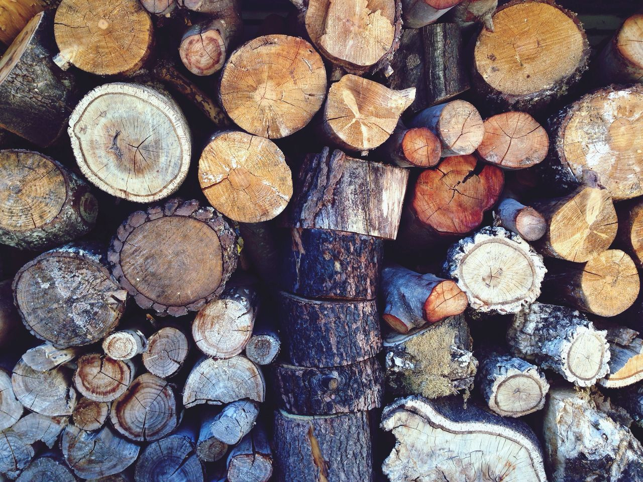 Beautiful stock photos of wood, Abundance, Day, Firewood, Full Frame
