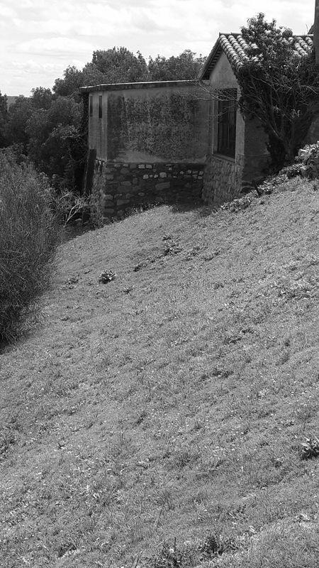 Casa Home Pasto Campo Abandonado Lejos Viejo Dejado Pradera