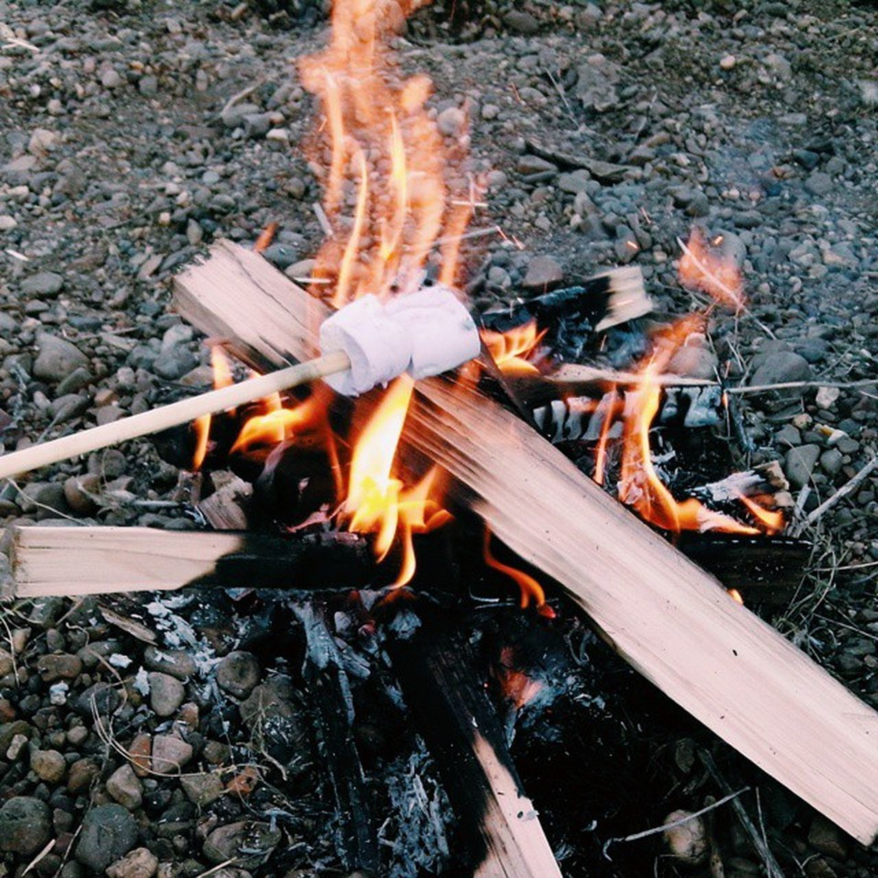 костер маршмеллоу  Природа Nature Fair огонь Лето 2015 Еда зефир Orange Color пламя языки пламяни бревна Вкусняшка First Eyeem Photo
