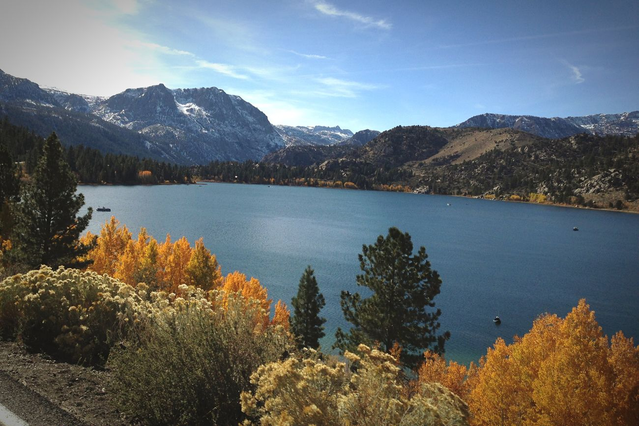 June Lake Nature Travel Trees Mountians Scenic Drive Mothernature Beauty Serenity