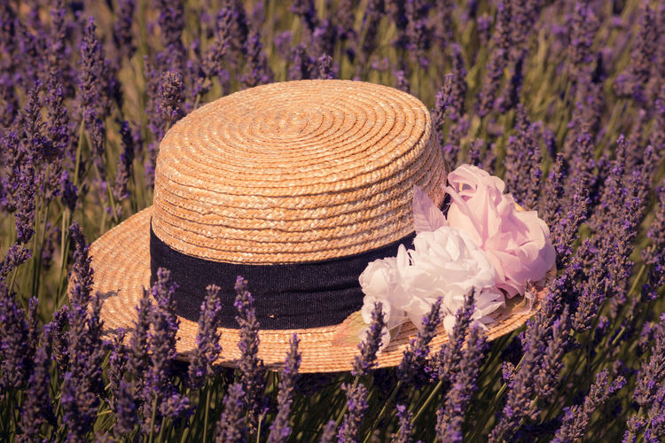 Just remember the lavender smell! Ah, definitely miss summer! Burning Sun Close Up Photography EyeEm Best Shots France Hat Lavender Lavender Field Lavender In Provence Outdoors Picture With Smell Purple Straw Hat And Sunshine Straw Hat Close Up Valensole Plateau Women