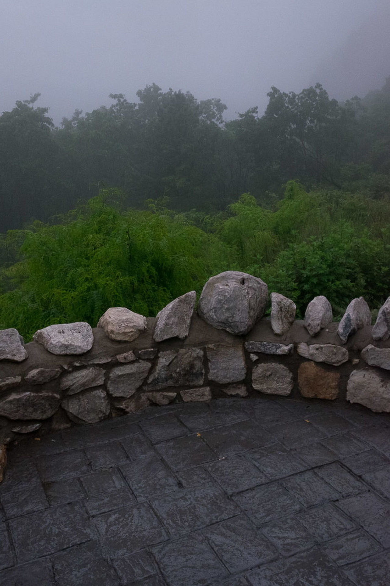 Foggy Lookout Architecture Beauty In Nature Calm Day Dragons Faces In Places Foggy Foggy Morning Growth Is That All There Is La Landscape Look Man And Nature Nature No People Outdoors Rock Scenics Sky Tourist Attraction  Tranquil Scene Tranquility Tree Vintage