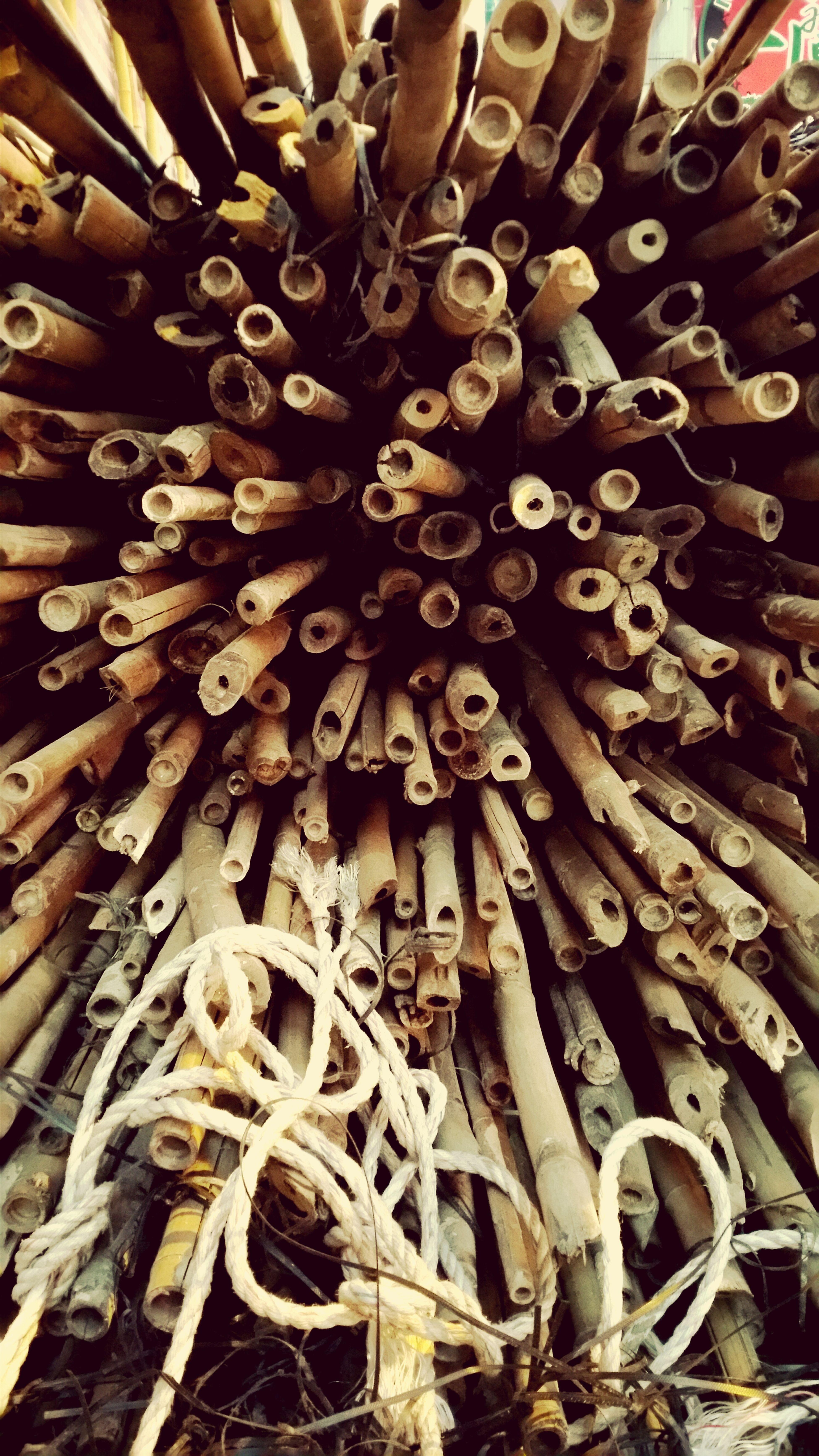 Bamboo, backbone of skyscraper Construction.