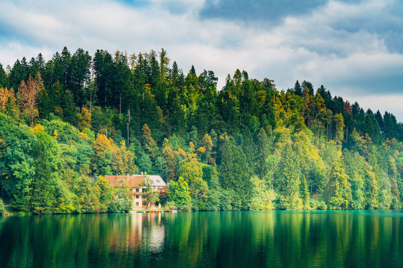 Beauty In Nature Cloud - Sky Day Forest Green Color Growth Idyllic Lake Landscape Mountain Nature No People Outdoors Scenics Sky Tranquil Scene Tranquility Tree Water