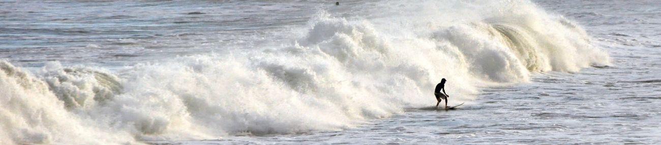 Surf's Up Beach Photographyart Brasil ♥ Photography Taking Photos Natureza 🐦🌳