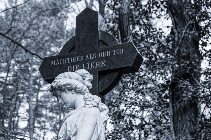 Cemetery Friedhof Grabstein Grabsteine Headstone Headstones Headstones In A Row Human Representation Low Angle View Military Sculpture Skulptur Soldatenfriedhöfe Text Liebe Love Memories