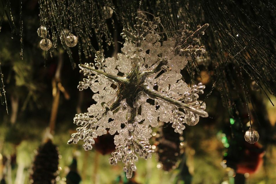 Nature Tree Branch Fragility Close-up Snowflake Winter Outdoors No People Day Cold Temperature Nofilter Chrismas Decoration Christkindlmarkt Nueremberg Lighting Equipment Christmas Market Christmas Ornament Illuminated Bazaar Christmas Decoration Market Abundance Choice Christmas