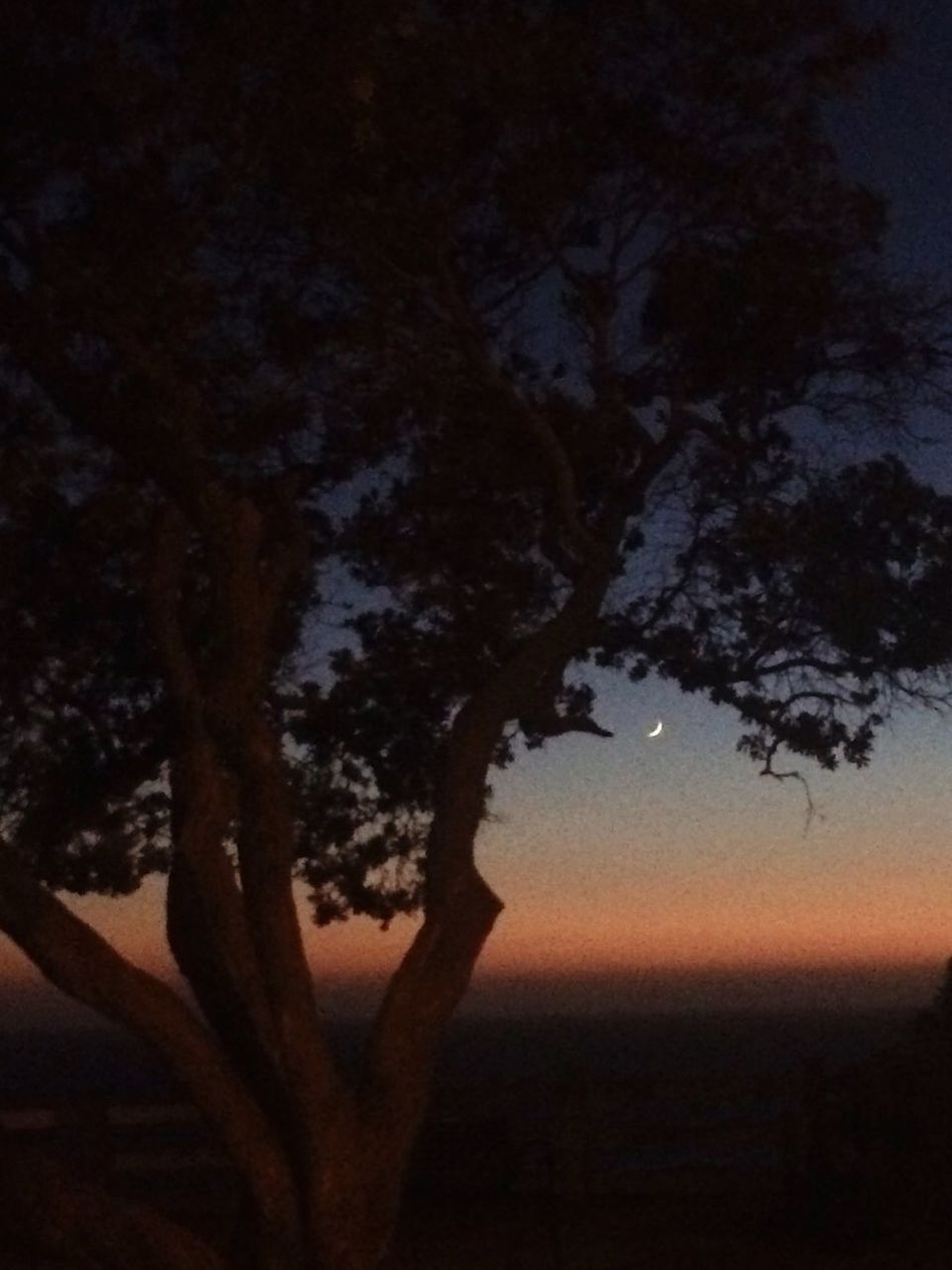 New Moon California Sunset Palisades Park Santa Monica