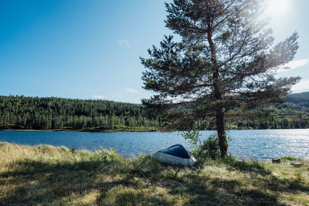 Beautiful stock photos of norway, Beauty In Nature, Clear Sky, Day, Growth