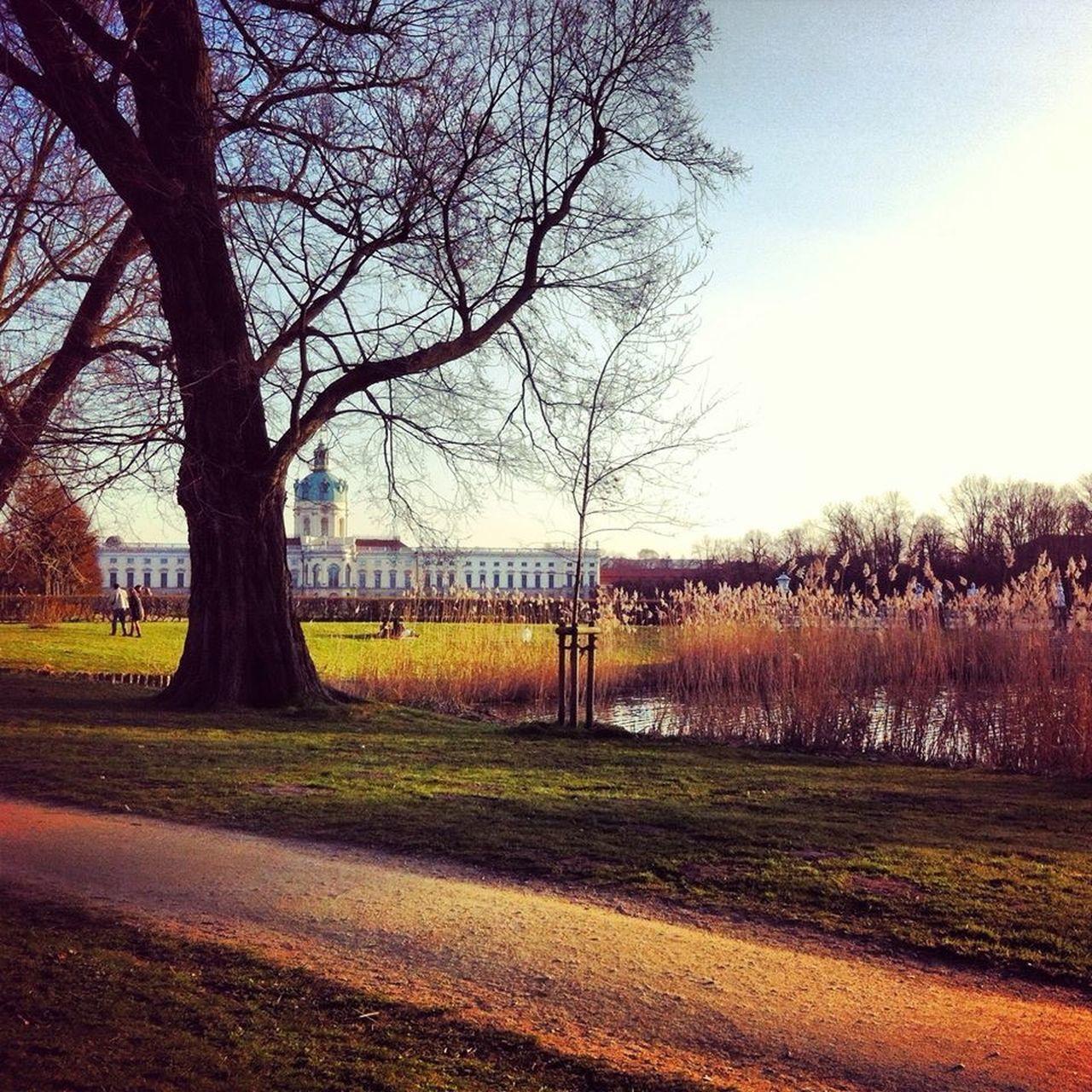 Schloss Charlottenburg. Berlin Schlosspark Charlottenburg  Schloss Charlottenburg Palace