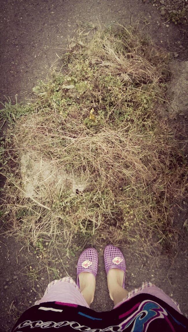 割雜草,三堆