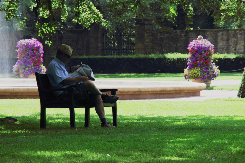 Man in Fulda Park/Germany Flowers Hat On Man In The Park Pink Reading Newspaper Sitting Man Time For Me Water
