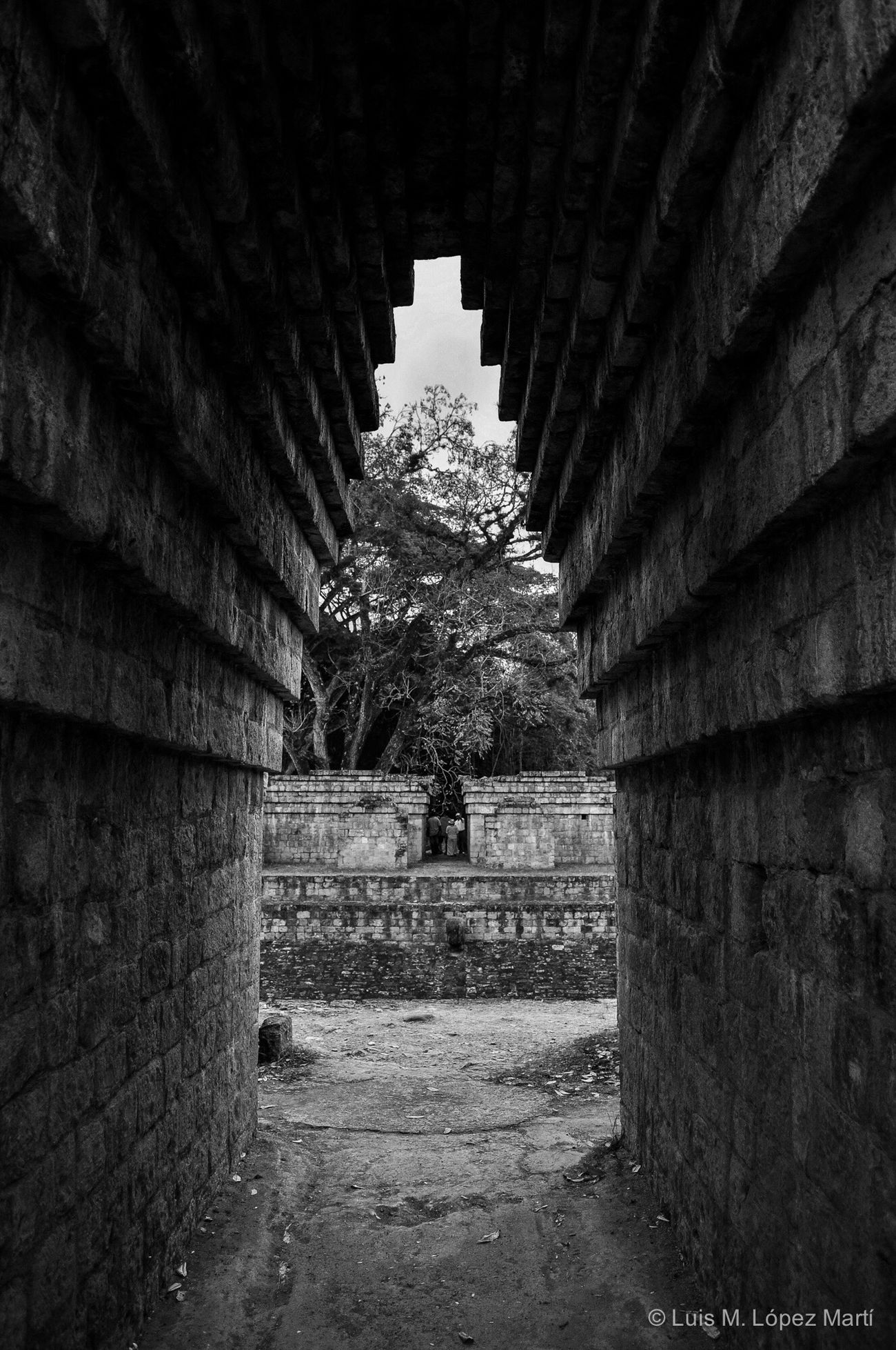 Copán Ruinas, Honduras Architecture Archeology Archeological Site Lifestyles Life Tranquility Photography Photo Nikon Nikonphotography Blackandwhite Black And White Ancient Ancient Civilization Black & White Blackandwhite Photography Light And Shadow Black And White Photography Monochrome Monochrome Photography Travel Travel Destinations History Architecture
