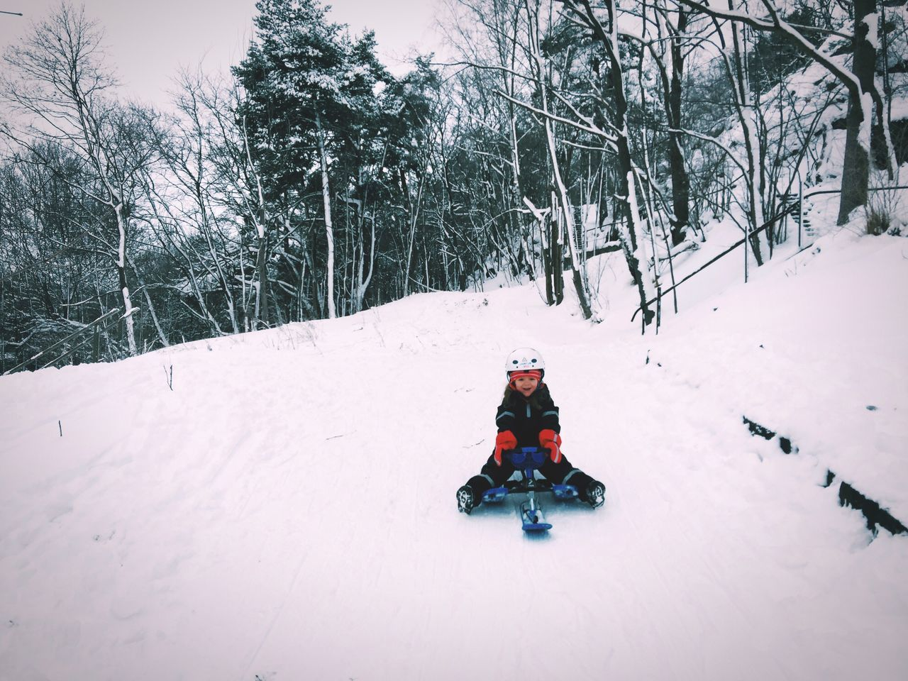 Loving her new snowracer! Winter Snow Cold Temperature Childhood Tree Bare Tree Outdoors Nature Day No People Beauty In Nature