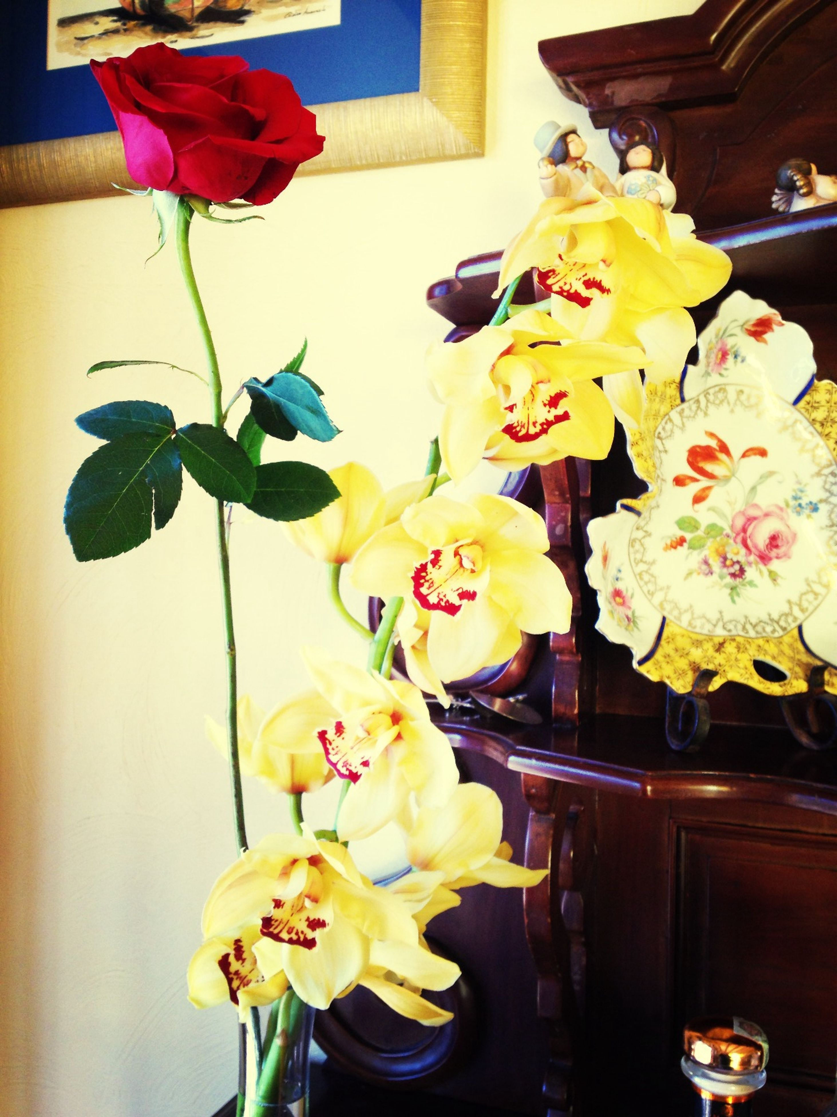 indoors, flower, petal, vase, fragility, home interior, decoration, flower head, yellow, freshness, table, bouquet, flower arrangement, close-up, multi colored, potted plant, rose - flower, wall - building feature, no people, variation