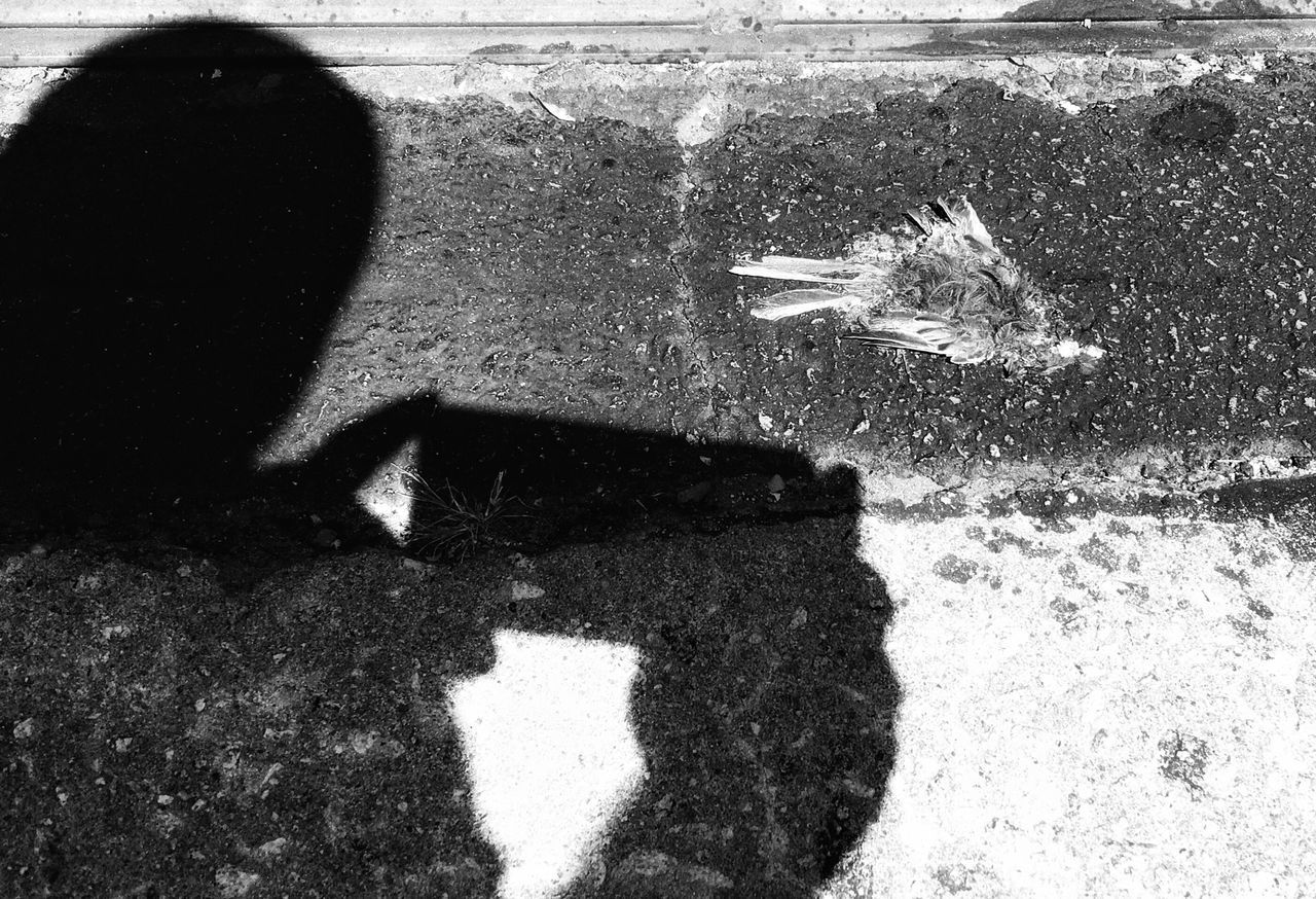 shadow, day, real people, outdoors, one person, water, nature, close-up, people