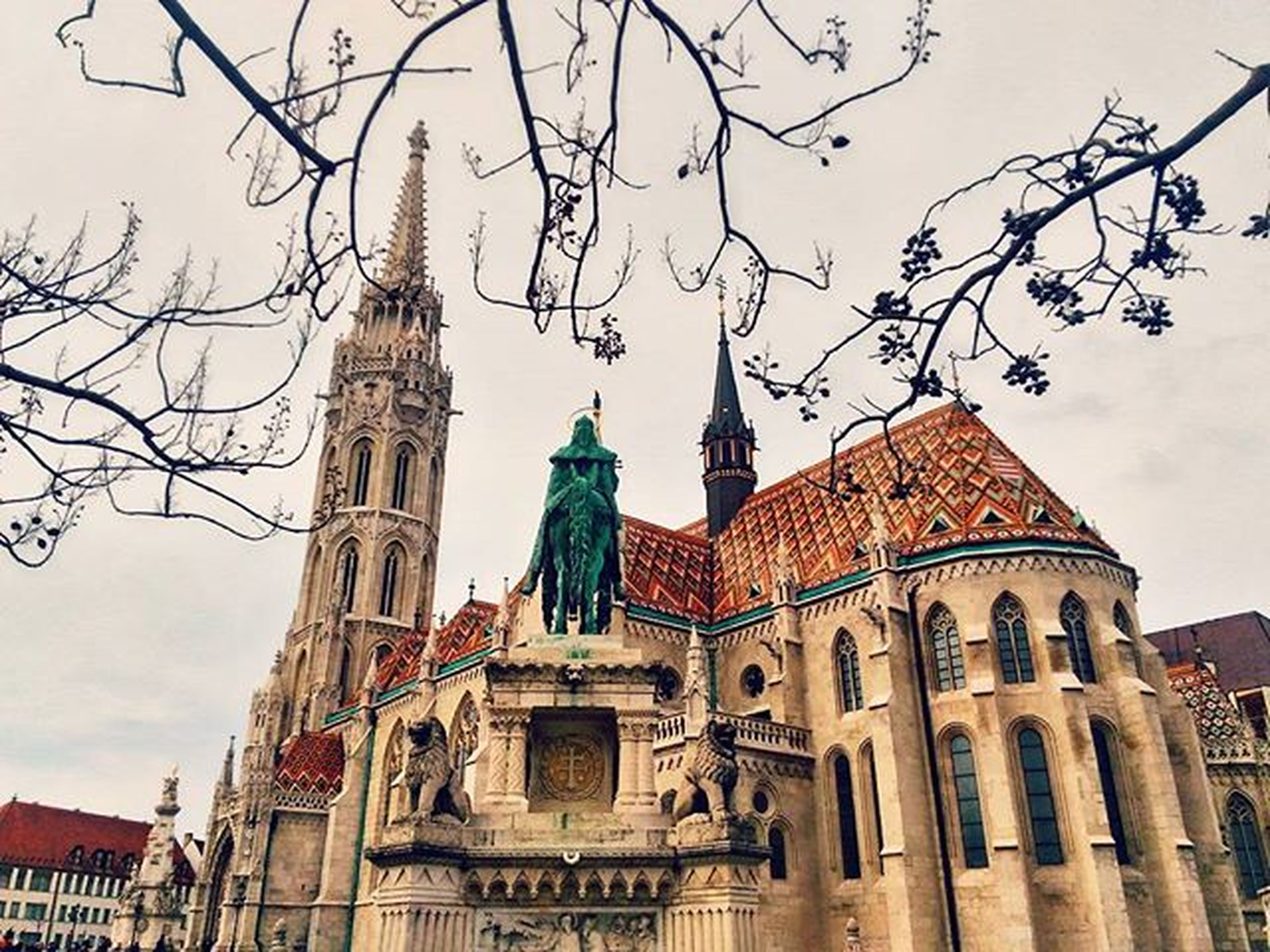 architecture, building exterior, built structure, low angle view, church, place of worship, bare tree, religion, spirituality, sky, city, cathedral, travel destinations, tower, branch, history, tree, famous place