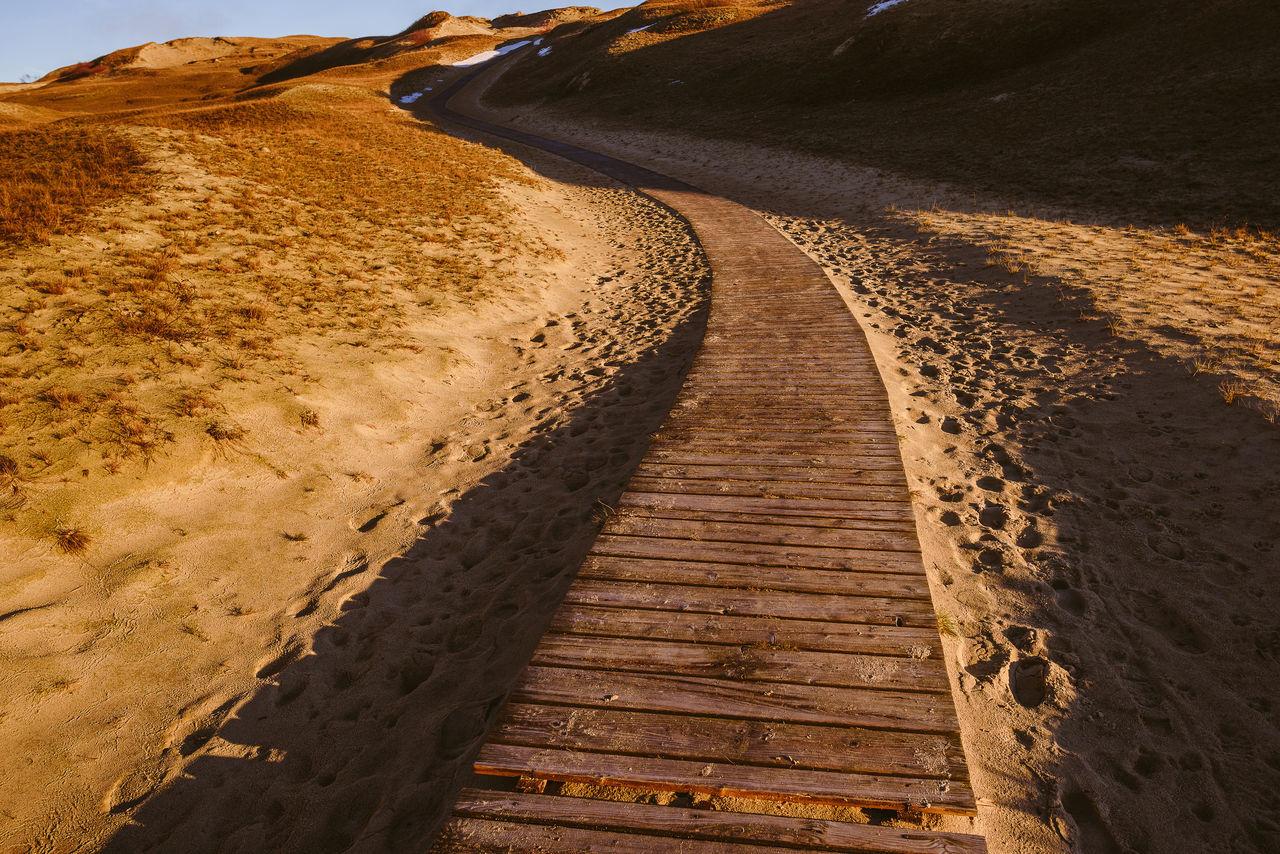 Grey (Dead) Dunes, Curonian Spit, Lithuania Curonian Spit Footpath Landscape Lietuva Nature Neringa Sand Sunset Travel Destination Walkpath Winding Wood