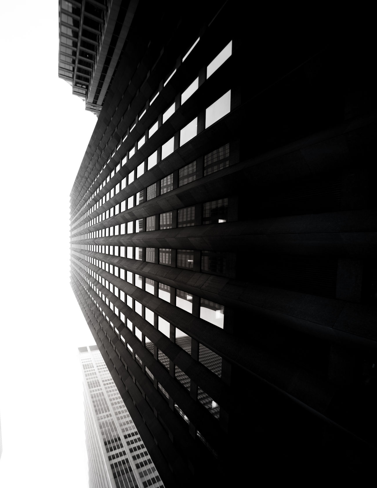 Perspective Architecture Blackandwhite Building Exterior Built Structure City Cityscape Day Growth Modern No People Outdoors Skyscraper Strength