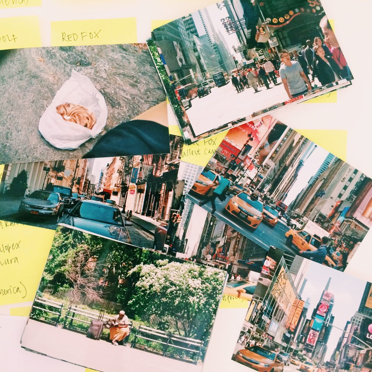 Photos Of Photos New York