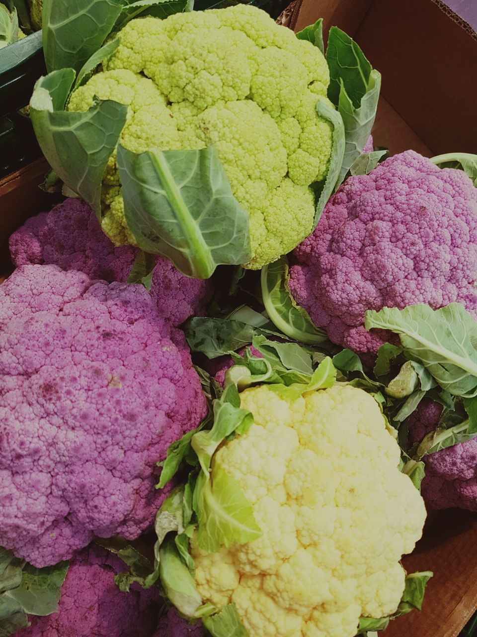 vegetable, food and drink, cabbage, cauliflower, freshness, healthy eating, food, no people, purple, close-up, variation, raw food, green color, day, indoors