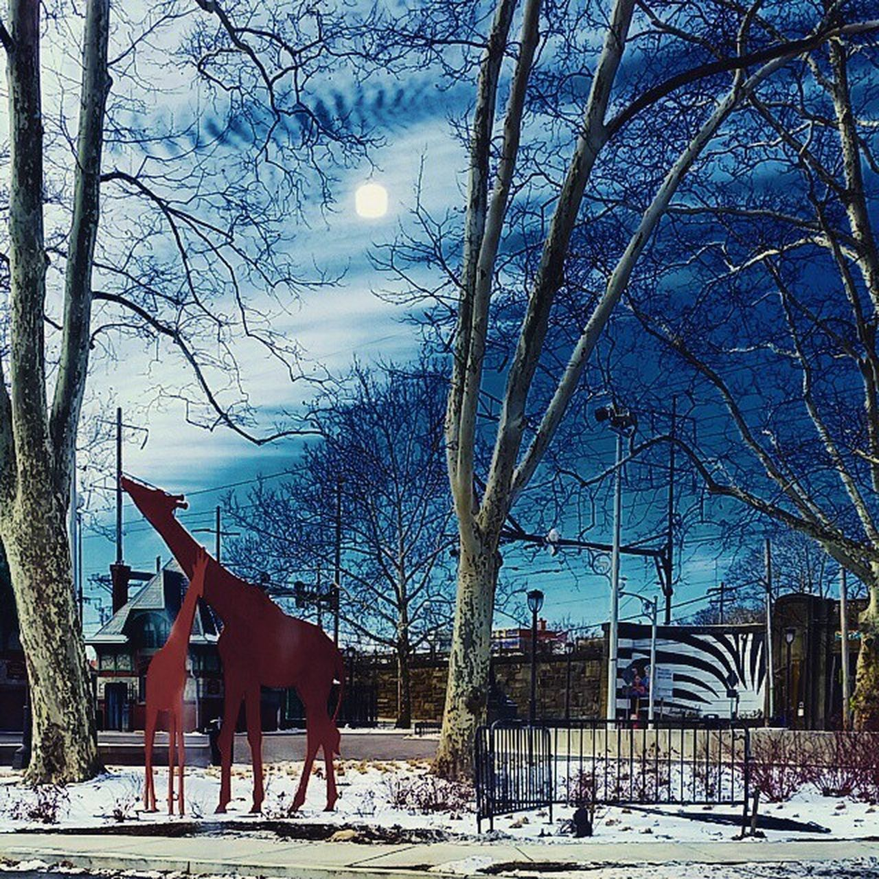 snow, winter, cold temperature, tree, bare tree, weather, architecture, built structure, sky, nature, building exterior, outdoors, day, no people