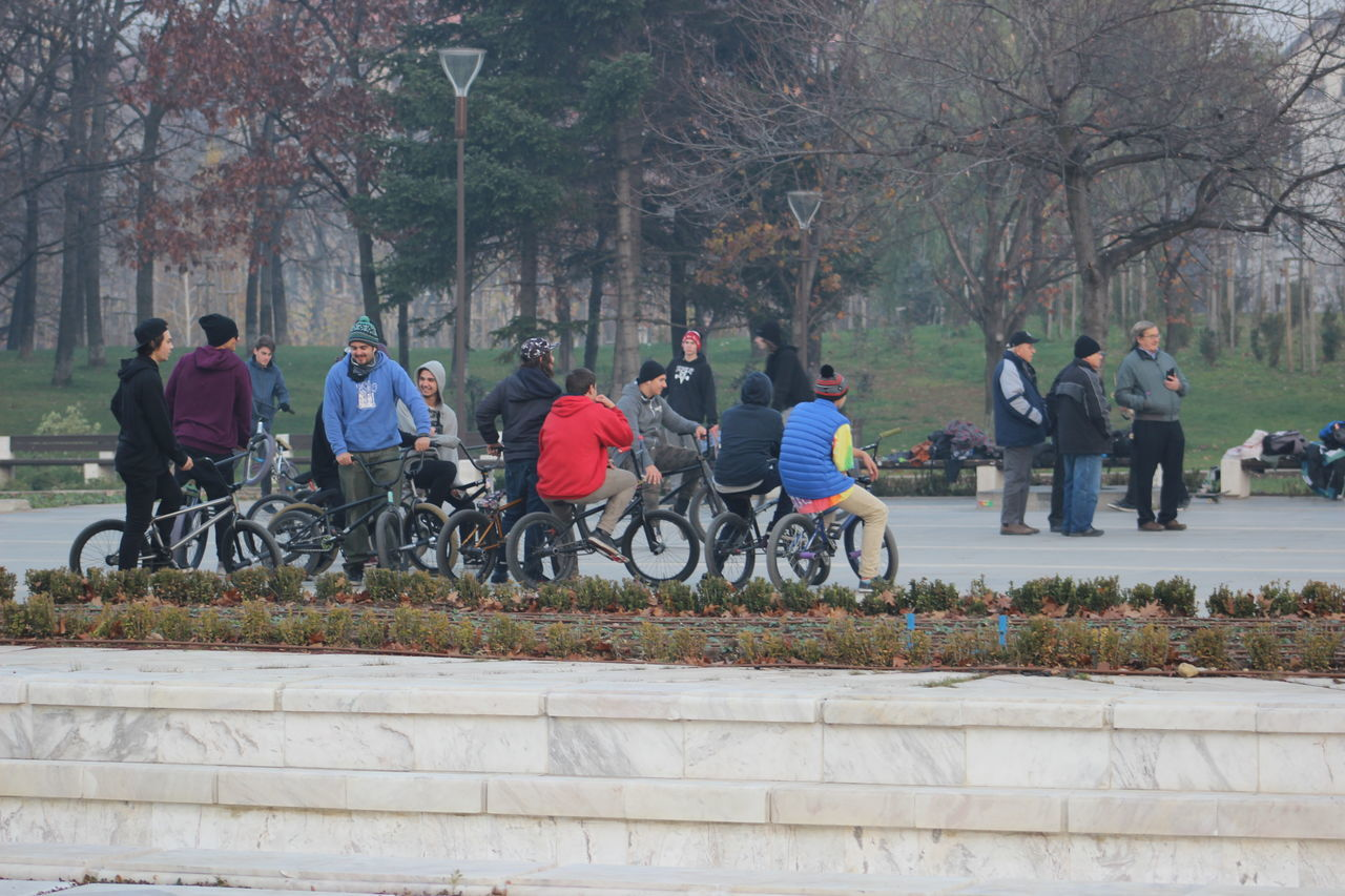 bicycle, transportation, tree, real people, leisure activity, cycling, mode of transport, men, day, land vehicle, riding, outdoors, lifestyles, large group of people, nature, women, growth, park - man made space, road, cycling helmet, sport, biker, people