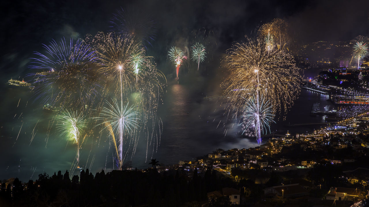 "Arts Culture And Entertainment Celebration Dandelion Exploding Firework Firework Display Glowing Growth Illuminated Long Exposure Majestic Motion Night Outdoors Palm Tree Power In Nature Shiny Sparks Speed ""New Year Around The World"" Cities At Night"