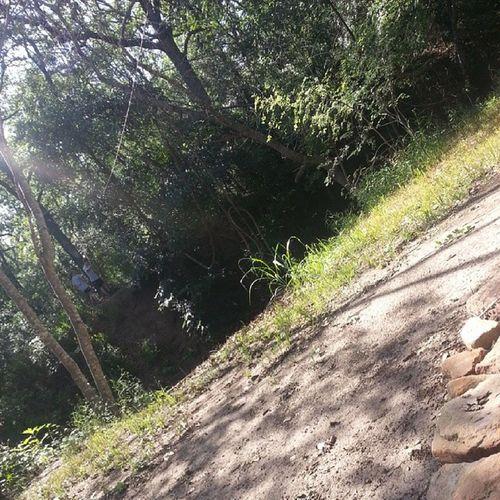 Outback in the creekGoingOnTheZipLineTheCreekFridayFunYay