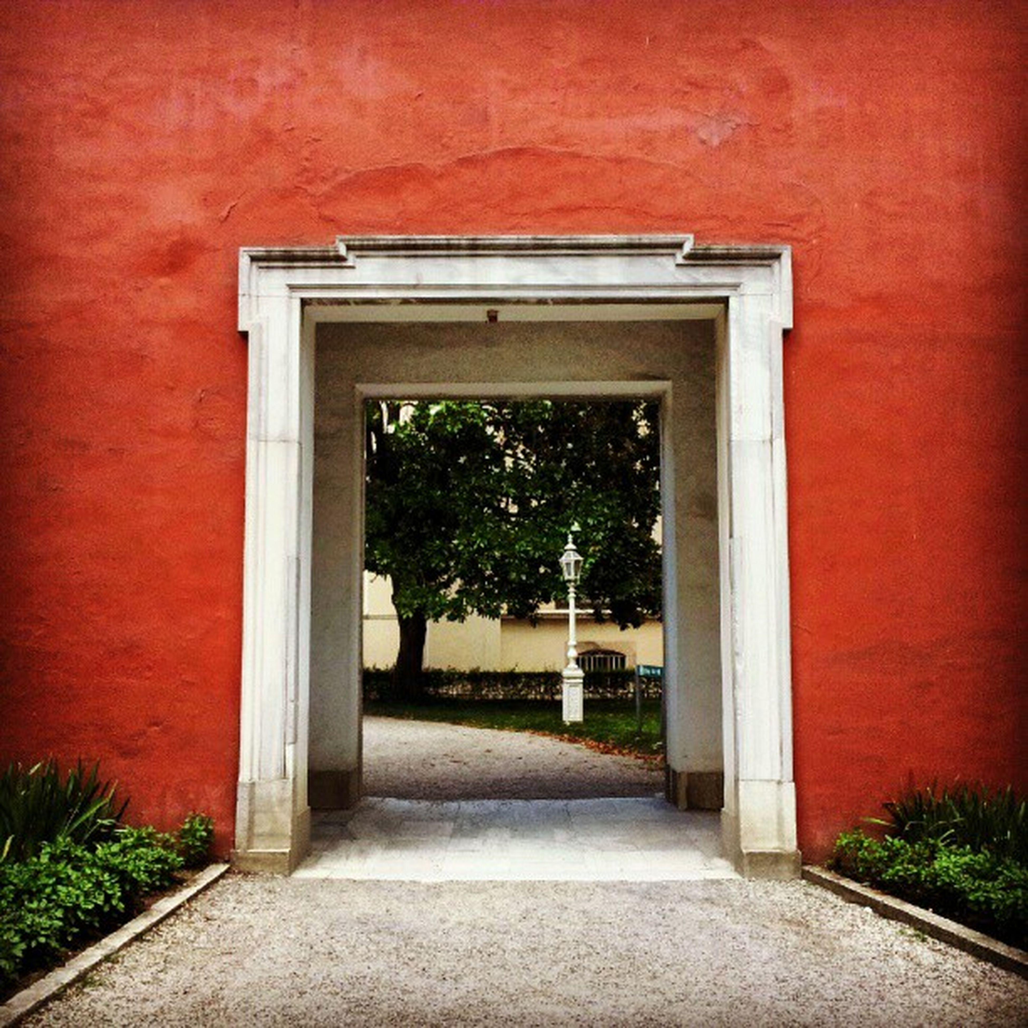 red, architecture, built structure, building exterior, door, closed, the way forward, entrance, tree, window, house, plant, day, wall - building feature, empty, no people, growth, outdoors, footpath, wall