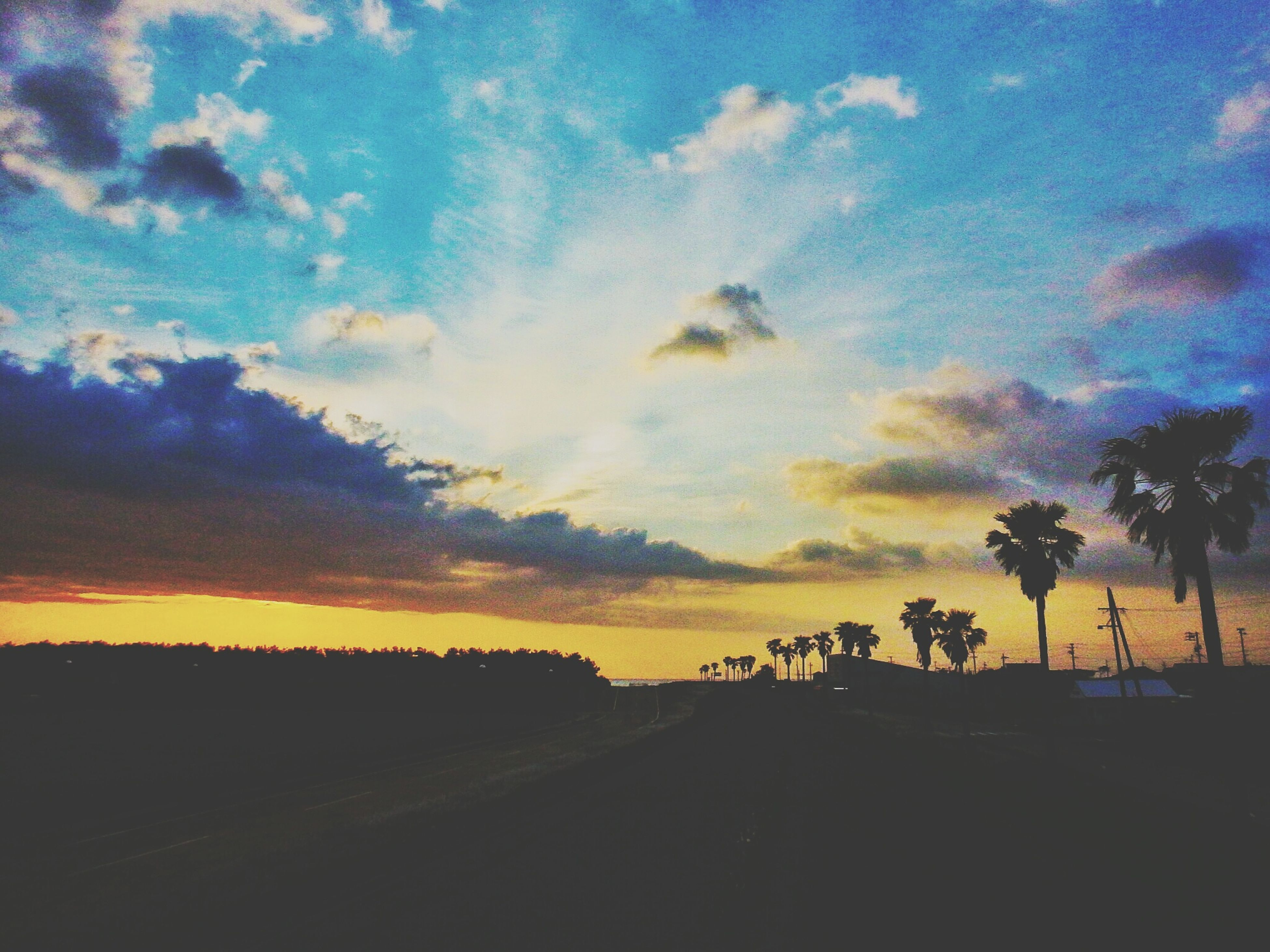 sunset, sky, silhouette, tranquil scene, tranquility, scenics, tree, beauty in nature, landscape, orange color, cloud - sky, nature, idyllic, cloud, road, outdoors, palm tree, no people, non-urban scene, field