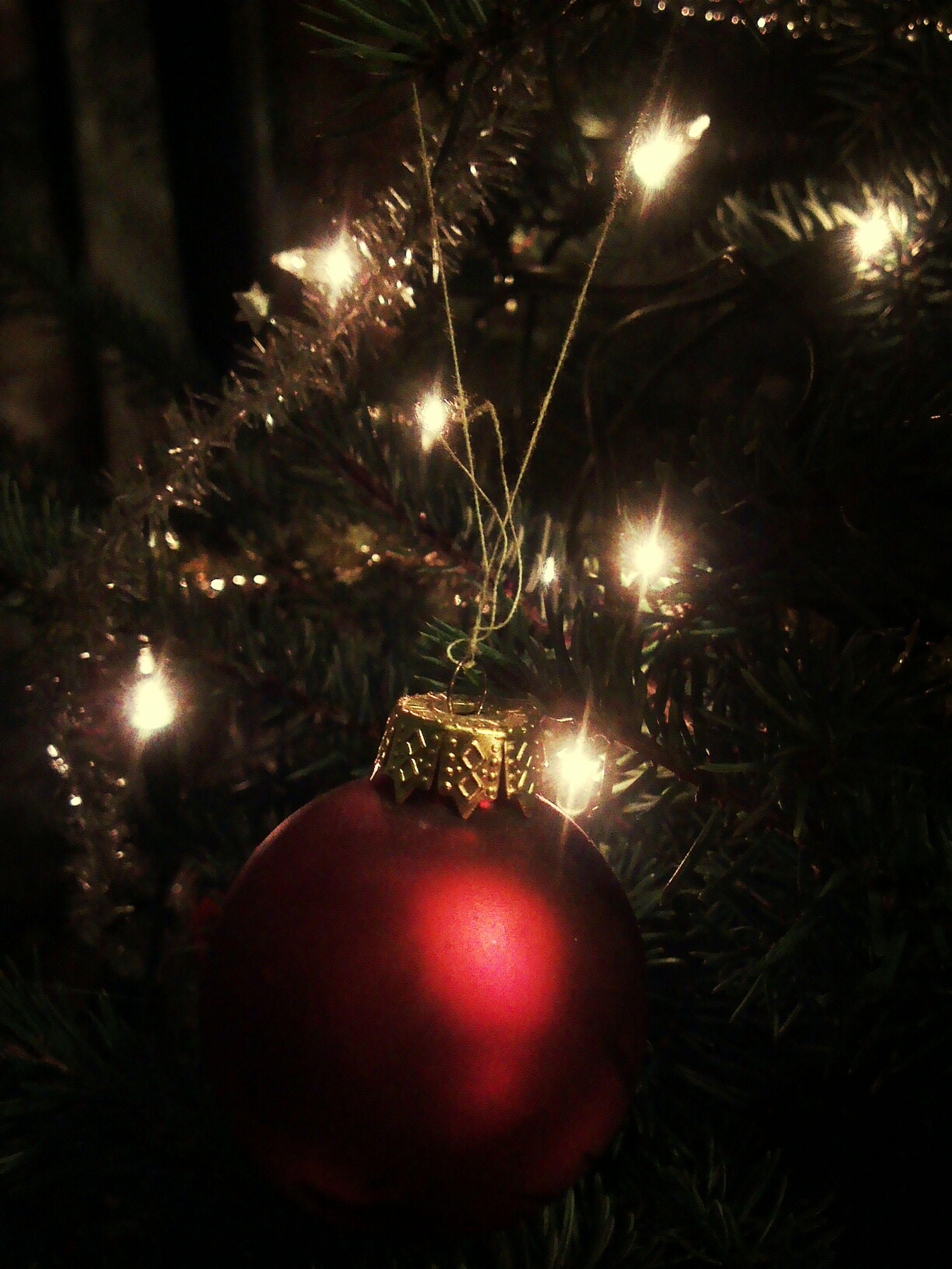 illuminated, celebration, night, christmas, christmas decoration, christmas tree, glowing, lighting equipment, firework display, christmas lights, exploding, firework - man made object, christmas ornament, decoration, celebration event, tradition, sparks, traditional festival, low angle view, holiday - event