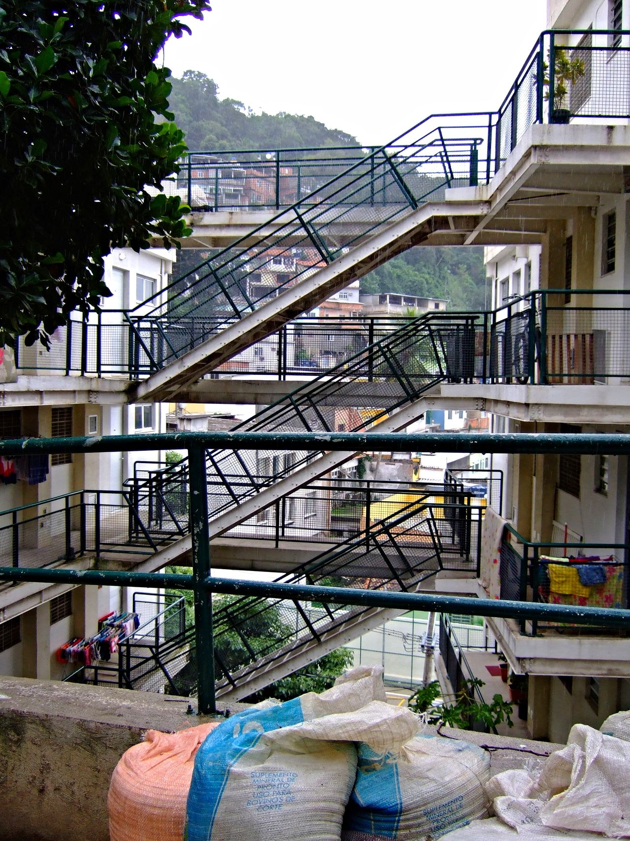 Architecture Building Exterior Built Structure Business Finance And Industry City Day Favela No People Outdoors Tree