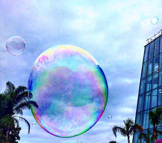Soap bubble Soap Bubbles World Wanderlust Lovephotography