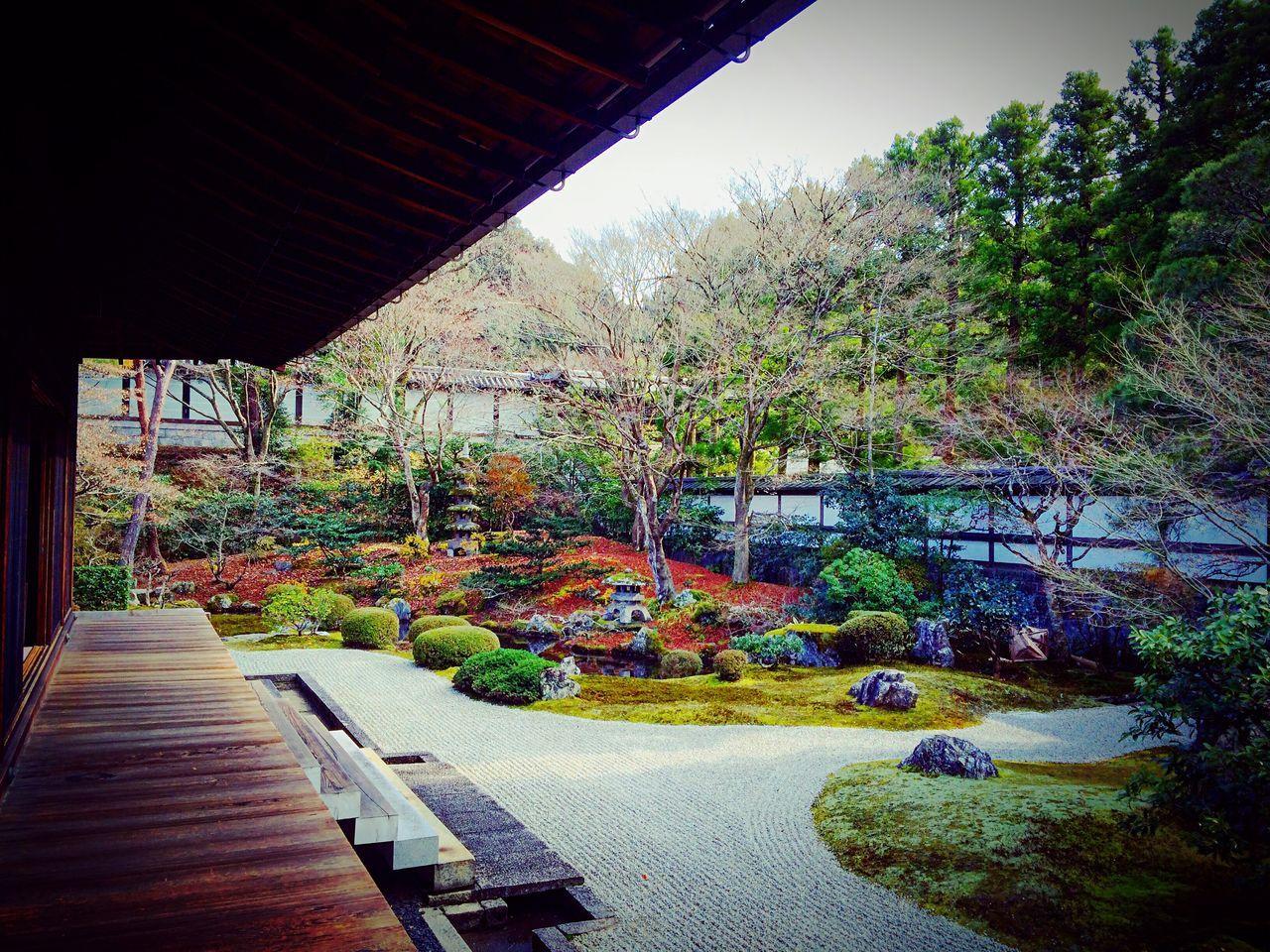 泉涌寺本坊庭園 Kyoto Relaxing 泉涌寺 寺社仏閣
