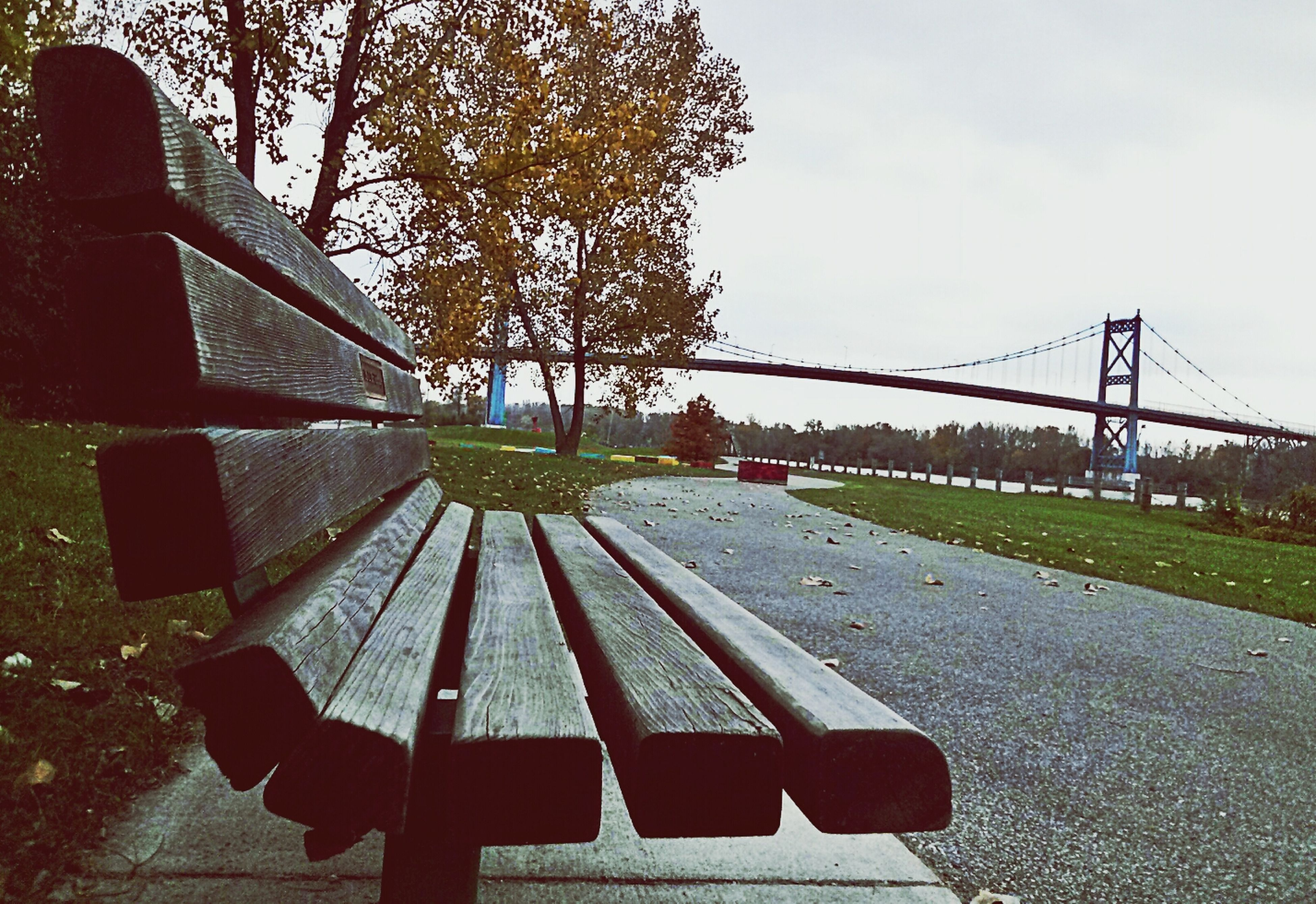 tree, lifestyles, leisure activity, railing, road, day, outdoors, sky, connection, park - man made space, the way forward, built structure, transportation, street, full length, bridge - man made structure, grass, playground