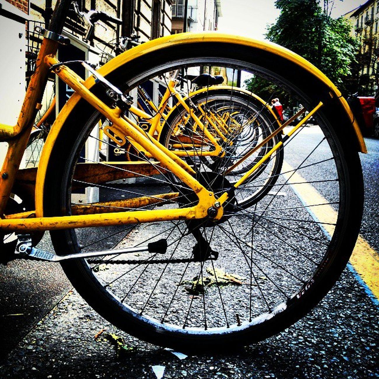 Wheells Bycicles Bycicles Turin Bike Bikelife Torinodigitale Torino Publicbikes Wheel Ig_asti_