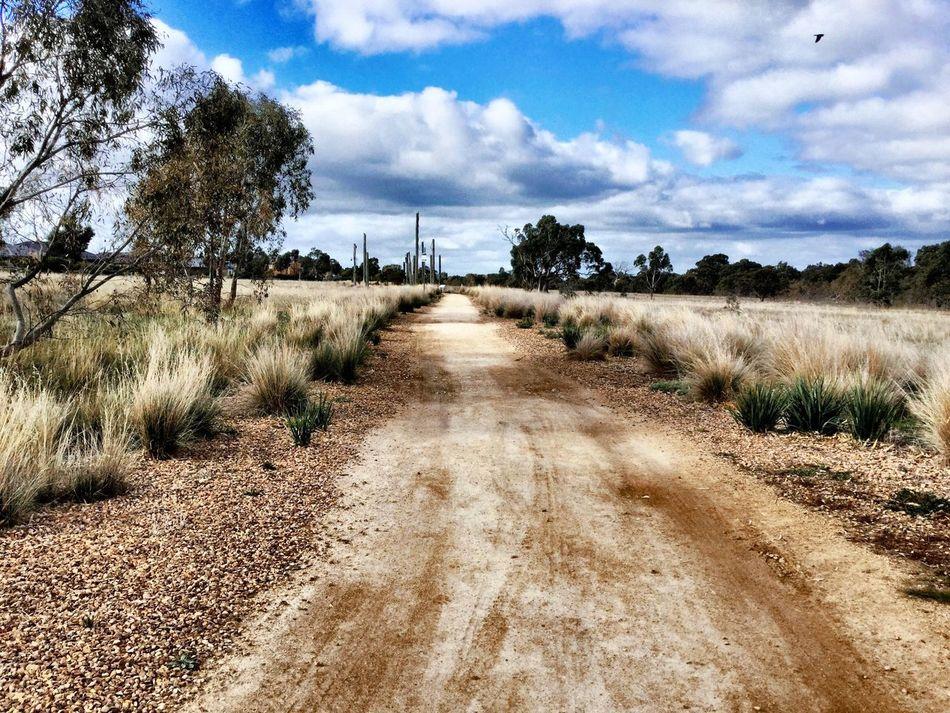 Dirt Road Long Way To Go... Blue Sky Tall Grass Walking Taking Photos No People