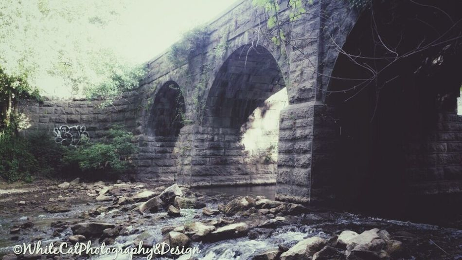 Erie Canal Old Canal System Dewitt New York Stone Bridge Stonework 19th Century Check This Out Walkways  Secret Places Hidden Gem
